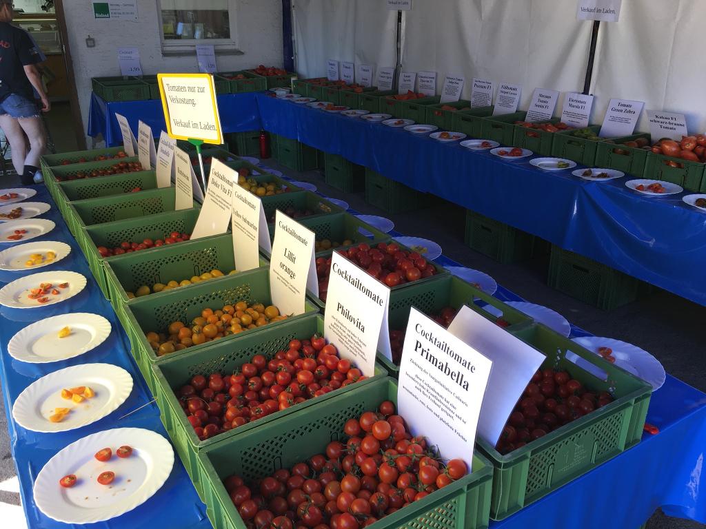 Tomaten Verkostung