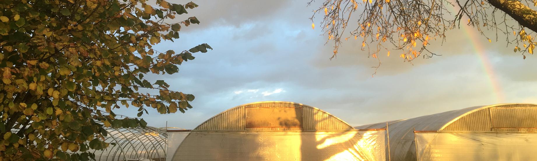 Sonnenuntergang mit Regenbogen
