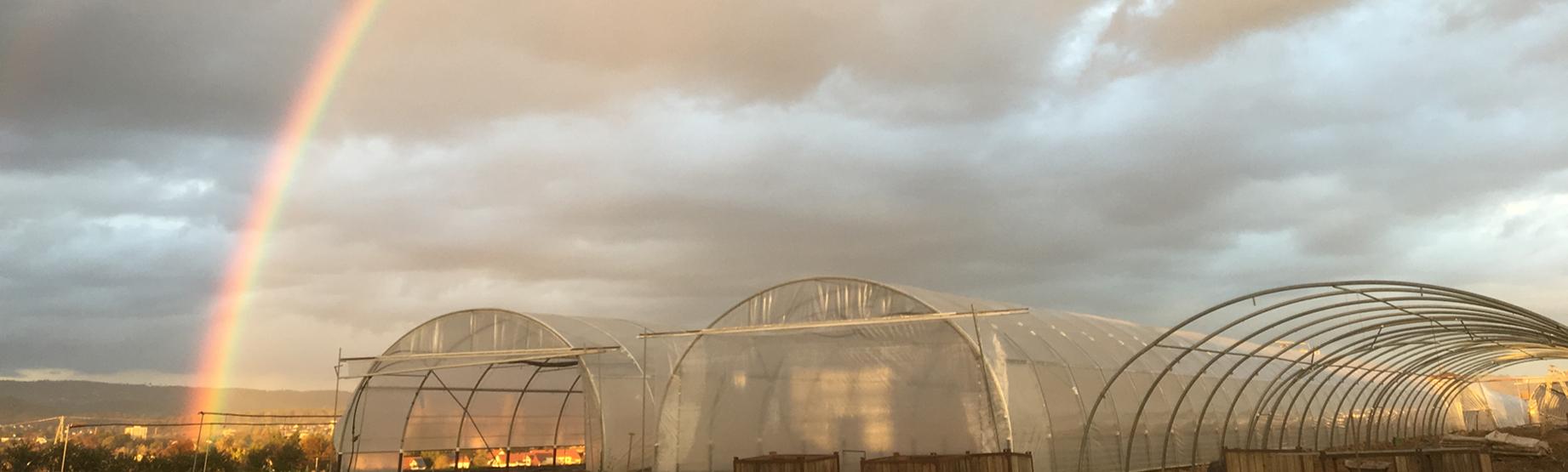 Regenbogen über Backnang